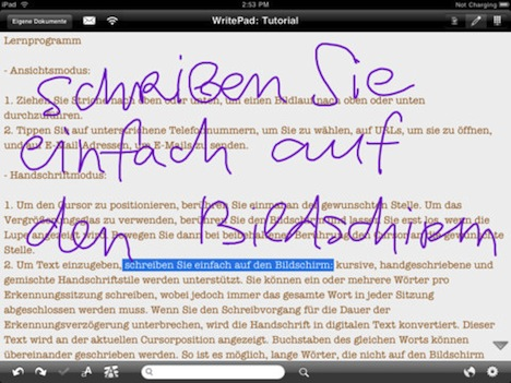 WritePad iPad