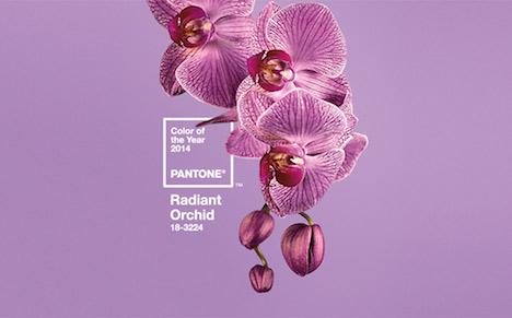 pantone2013