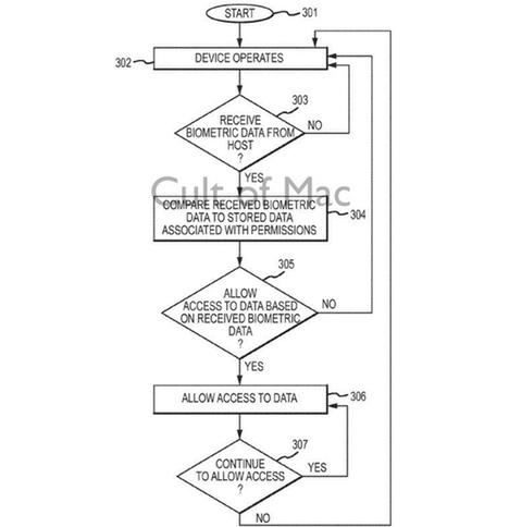 Patent Biometrische Daten 2