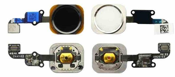 iphone-6-leak-2