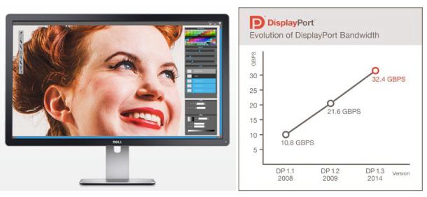 displayport13