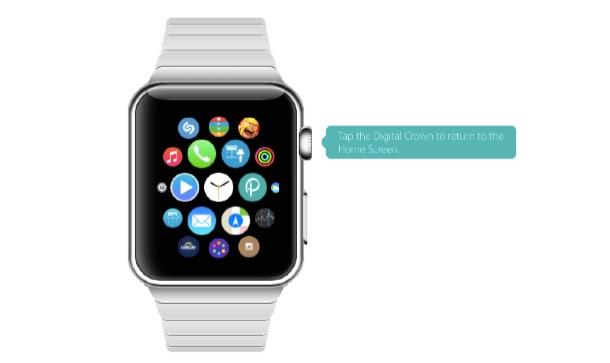 apple_watch_demo