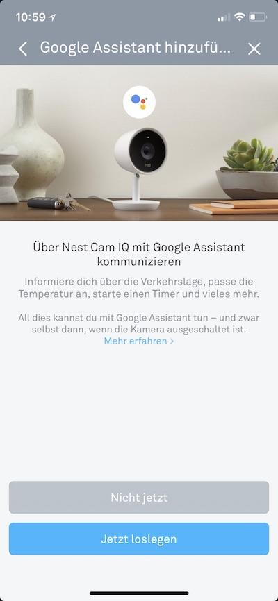 nest cam iq indoor support f r google assistant jetzt. Black Bedroom Furniture Sets. Home Design Ideas