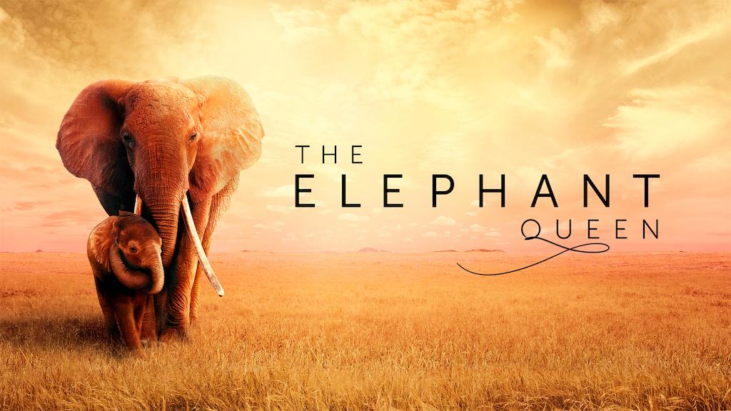"""Apple veröffentlicht offiziellen Trailer zu """"The Elephant Queen"""" › Macerkopf"""